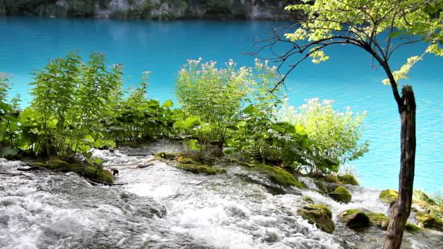 водопад и озеро - национальный парк плитвицкие озёра стоковые видео и кадры b-roll