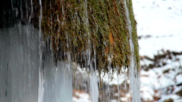 Waterfall and mossy rock in winter video