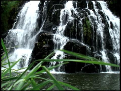 waterfall bottom - 10 saniyeden daha kısa stok videoları ve detay görüntü çekimi