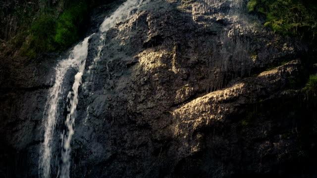 vídeos de stock, filmes e b-roll de cachoeira na face de pedra na floresta de noite - penedo