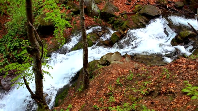 Waterfall falling among stones. River landscape mountains video