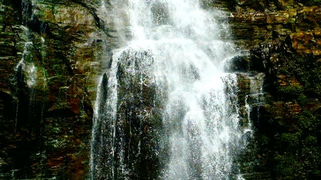 waterfall falling,slow motion - muschio flora video stock e b–roll