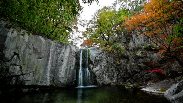 Waterfall flowing in autumn forest at national park