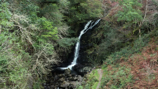 Waterfall flowing into a small river in a woodland area of rural Scotland video