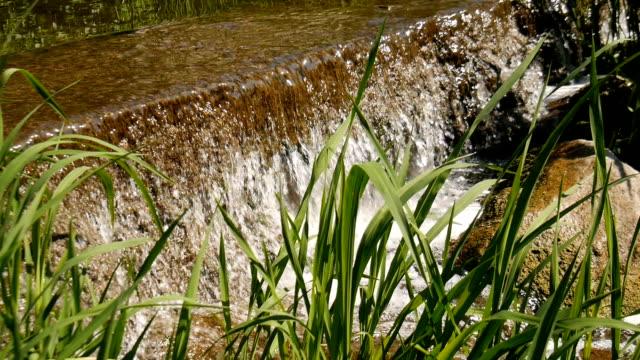 Wasserfall in einem Stadtpark. – Video