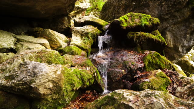 Waterfall In Autumn video
