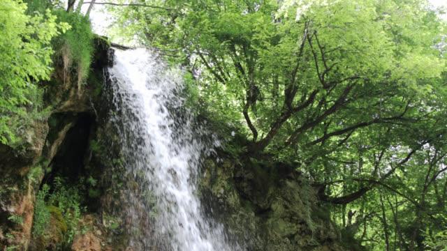Waterfall in Beautiful Nature