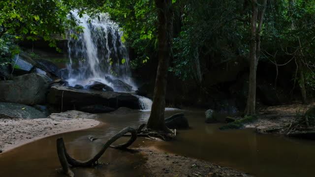 vidéos et rushes de cascade de la forêt profonde. - randonnée équestre