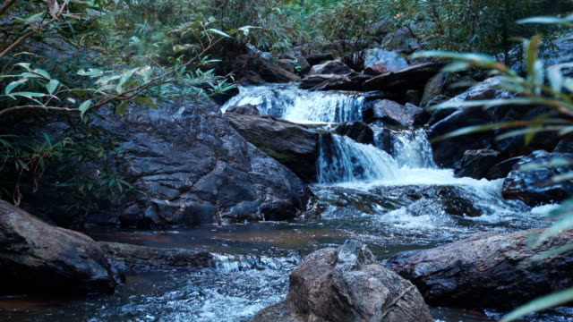 Waterfall in forest video