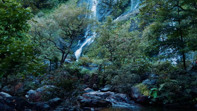 Waterfall in Rainforest Thailand video