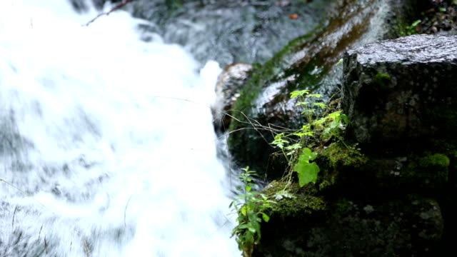 Waterfall in the park6