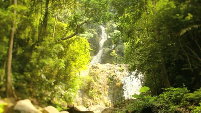 Waterfall in the Rain Forest, Tilt Shift Lens video