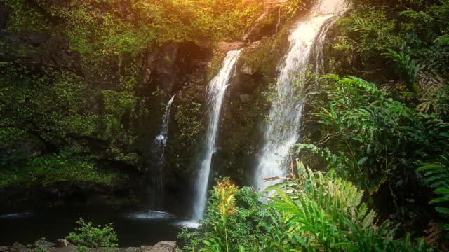 Waterfall in Tropical Paradise (HD Loop)