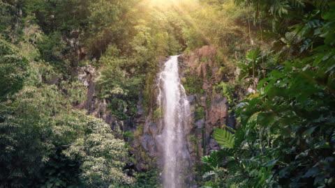 stockvideo's en b-roll-footage met waterval in tropisch paradijs (loop) - 4k resolutie