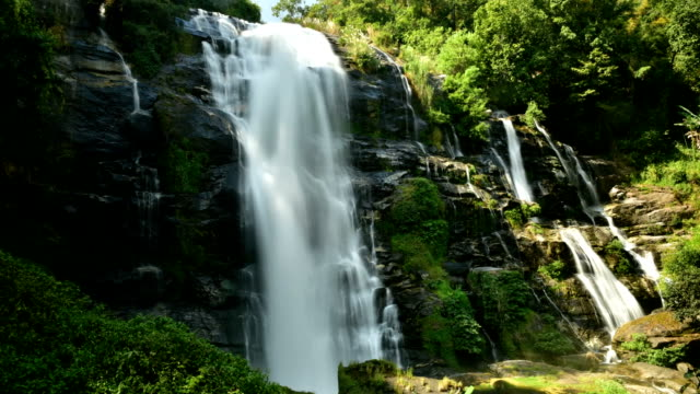 Waterfall in Tropical Paradise (HD Loop) video