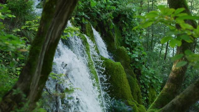 waterfall inside a forest - национальный парк плитвицкие озёра стоковые видео и кадры b-roll