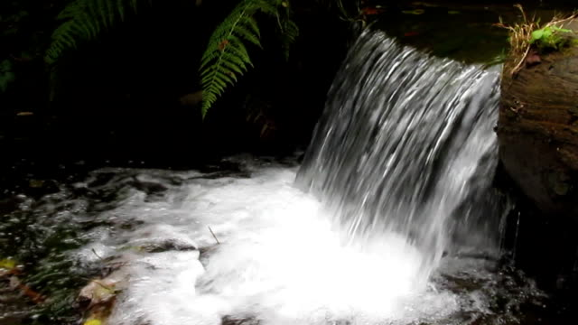 Waterfall of a small mountain speech of the Carpathians video