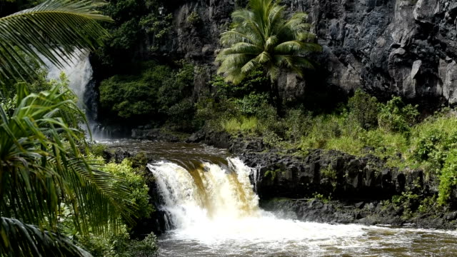 Waterfall on the road to Hana on Maui video