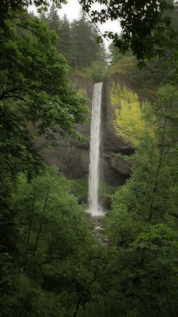 waterfall scenic - vertical - vertical format video stock videos and b-roll footage