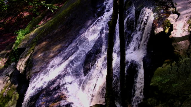Waterfall Stream - Slow Motion video