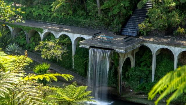 vídeos de stock e filmes b-roll de queda de água timelapse. vistas de jardins do palácio de monte tropical, no funchal, de madeira - funchal madeira