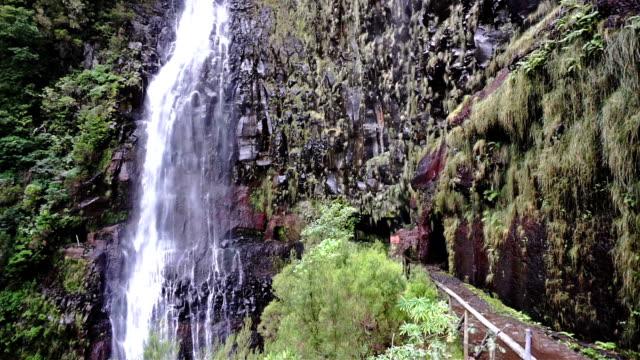 vídeos de stock e filmes b-roll de waterfall - ilha da madeira