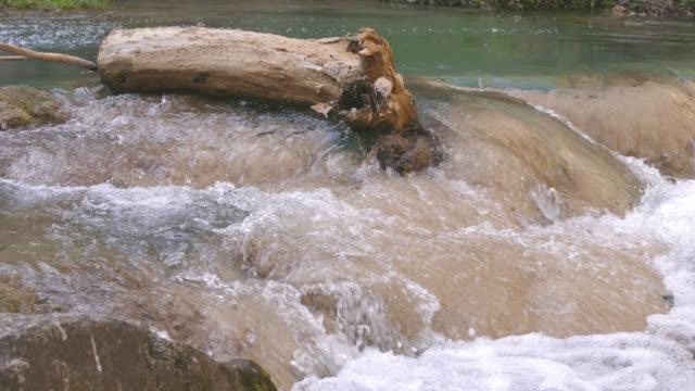 vattenfall - anatolien bildbanksvideor och videomaterial från bakom kulisserna