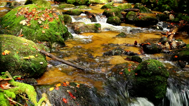 Waterfall with boulders HD VIDEO SHOT of Waterfall in the forest with large boulders boulder rock stock videos & royalty-free footage