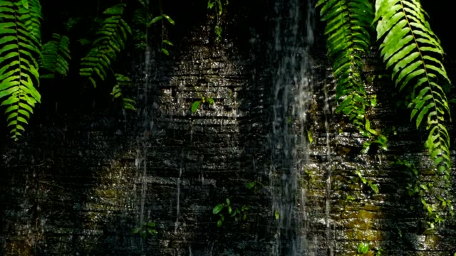 Waterfall with green plants decoration at front for backdrop