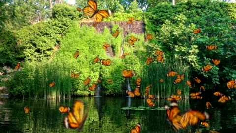 Waterfall with many yellow Butterfly Lake with many yellow Butterfly flying dancing circle around.Ultra HD, Ultra-High Definition. Group of Monarch. Butterflies Flock Background. 3d render. fantasy stock videos & royalty-free footage