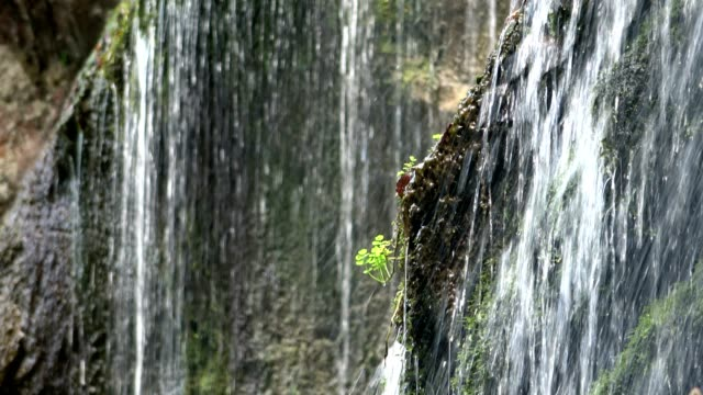 Waterfall with moss, clearwater, cascade, alps, Bavaria, Upper Bavaria