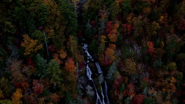 vidéos et rushes de chutes d'eau aerial v7 voler bas au-dessus de dukes creek falls panoramique à l'automne près de helen ga. - nord