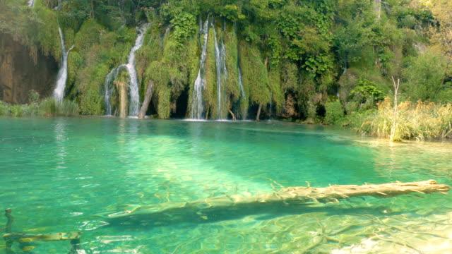 waterfalls and tree in the water - национальный парк плитвицкие озёра стоковые видео и кадры b-roll