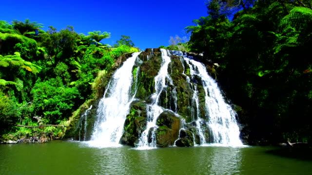 waterfalls in coromandel / new zealand - водопад стоковые видео и кадры b-roll