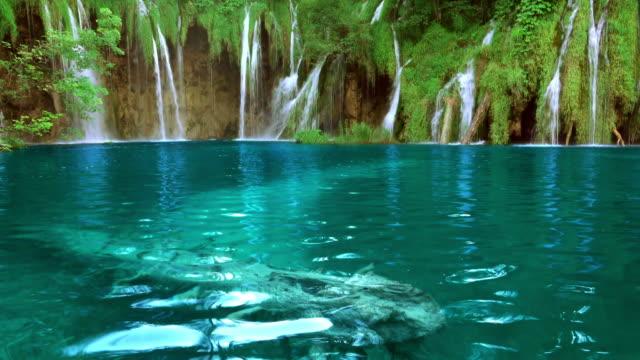 Waterfalls in Forest Lake. UHD. Seamless Loop