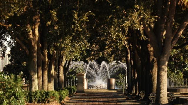 Waterfront park in Charleston South Carolina Public walking path by the Ashley River on the waterfront park in Charleston South Carolina USA south carolina stock videos & royalty-free footage