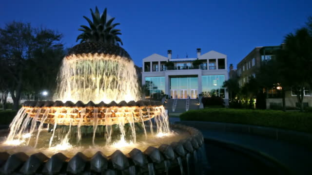 Waterfront Park Located in Waterfront Park, Pineapple Fountain represents the welcoming hospitality for which Charleston is so well known south carolina stock videos & royalty-free footage