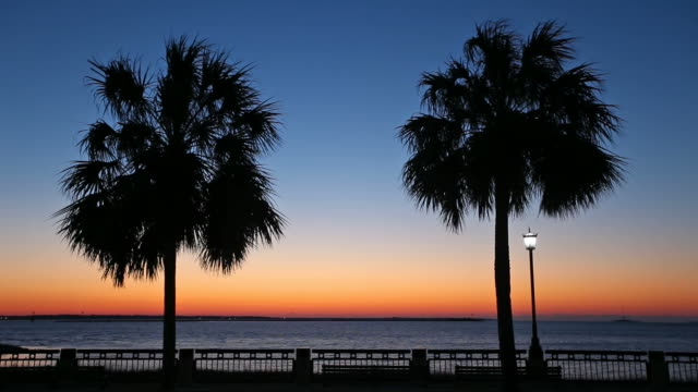 Waterfront Park Waterfront Park is a twelve-acre  park along approximately one-half mile of the Cooper River in Charleston, South Carolina. south carolina stock videos & royalty-free footage