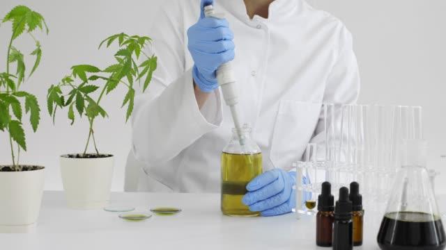 vattning cannabis plantor i laboratoriet med exakt dropper - thc bildbanksvideor och videomaterial från bakom kulisserna
