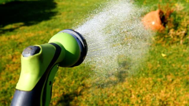 Jardin avec tuyau d'eau - Vidéo