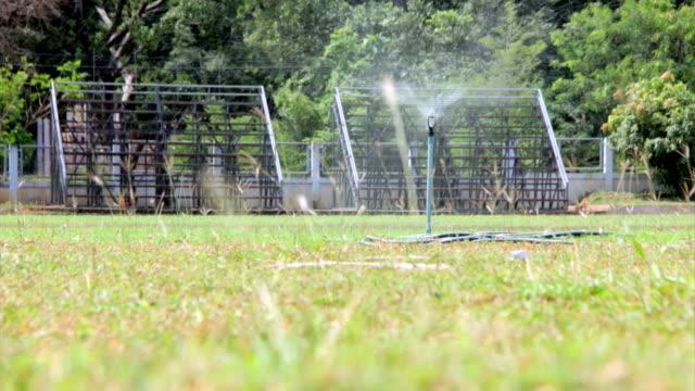 watering grass in field
