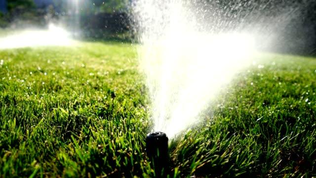 Arrosage Irrigation arrosage de pelouse - Vidéo