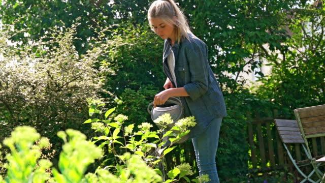 Watering plants video