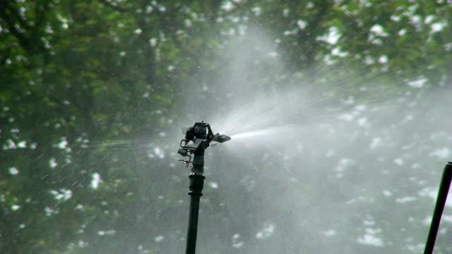 watering system - fruktträdgård bildbanksvideor och videomaterial från bakom kulisserna
