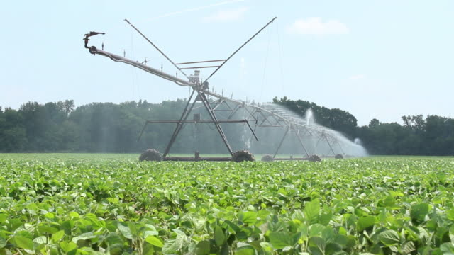 Watering the Crops video