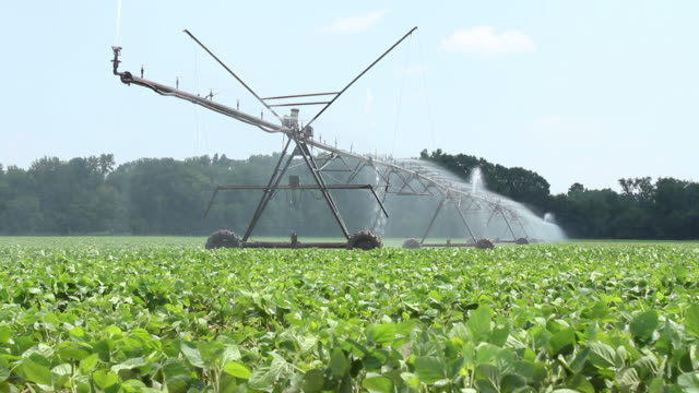 Watering the Farm Crops video