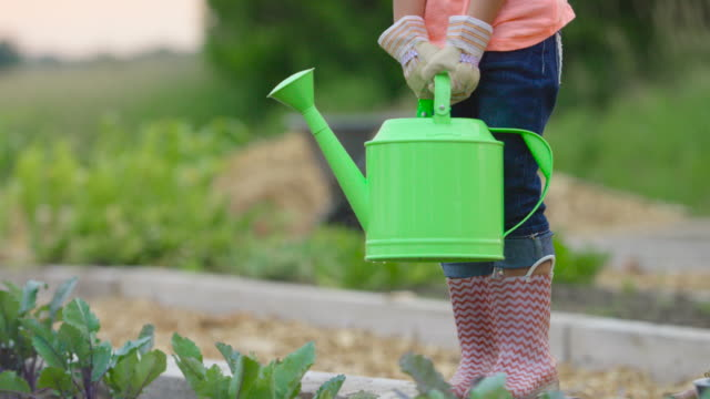 Watering the Plants video
