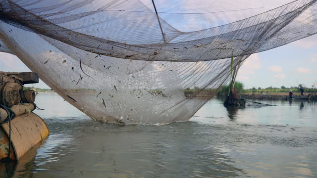 Water-level view on river chinese fishing net and fisherman using a hand net to catch fishes out of it