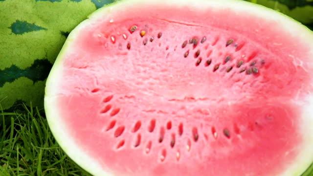 Watermelon on a green field. video