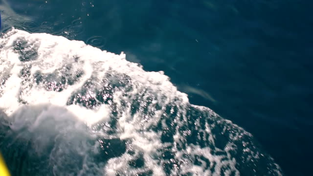 Wave caused by a cruise ship, slow motion. video